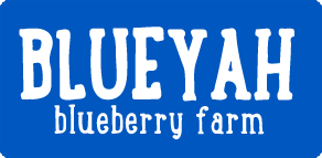 Blueyah Blueberry Farm